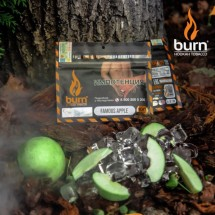 Burn FAMOUS APPLE 100гр