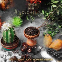 ELEMENT Вода - Cactus and fig ( Кактусовый финик)  100гр