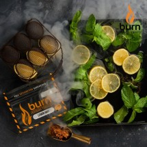 Burn LEMON MINT 20гр